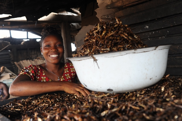 Roast Foundation invests in young entrepreneurs through Togo YMCA and Y Care International