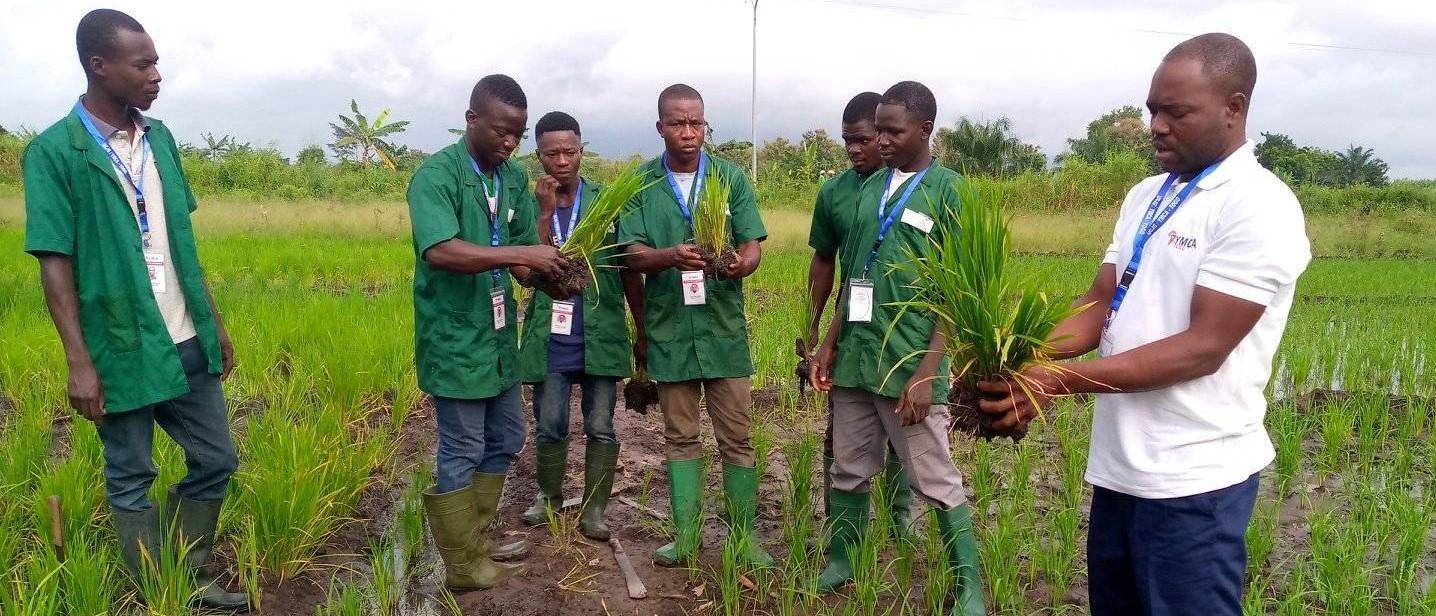 RECRUTEMENT POUR LA FORMATION DE JEUNES ENTREPRENEURS AGRICOLES